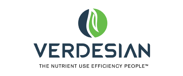 Verdesian Logo - Dark blue sans-serif type with blue and green circle icon on top