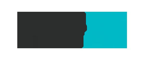 d-wise Logo - Black sans-serif type with turquoise bird icon to right